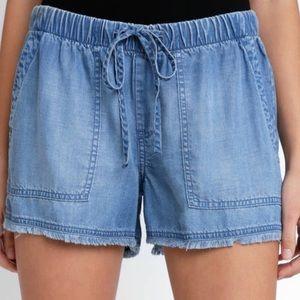 Anthropologie Cloth & Stone Chambray Fray Shorts